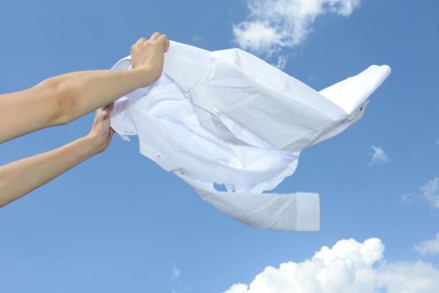 清潔で快適な毎日に役立つ洗剤として